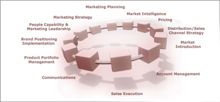 The twelve elements of Marketing & Sales